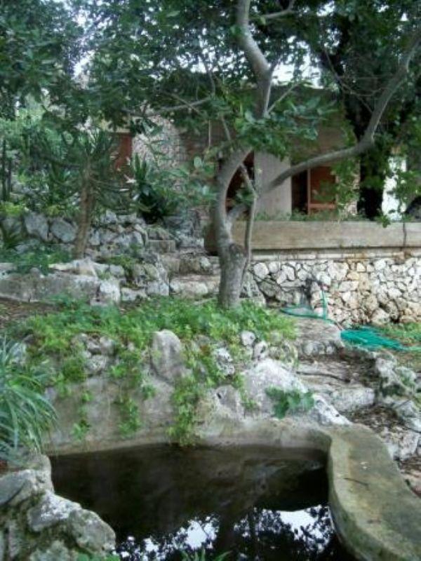 Villa con giardino vasca per pesci in pietra viva ville for Vasca pesci giardino